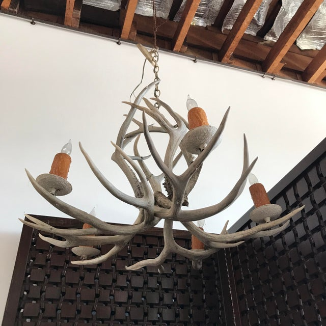 Vintage Late 20th Century Five-Light Antler Chandelier For Sale In Los Angeles - Image 6 of 7