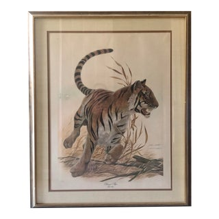 1970s Safari John Ruthven Print of Bengal Tiger - Framed For Sale