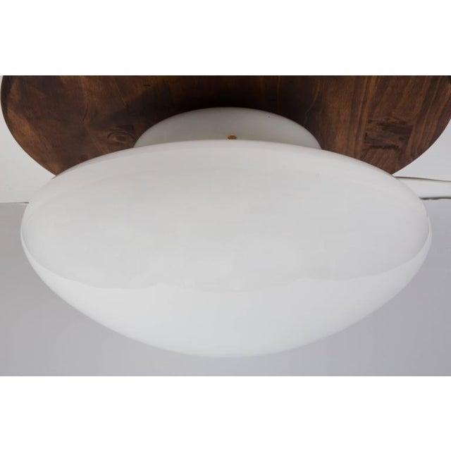 1970s 1971 Sergio Mazza 'Magnolia' Ceiling Lamp for Quattrifolio For Sale - Image 5 of 7