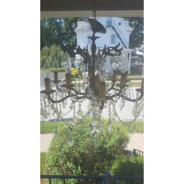 Antique 12-Light Bronze & Glass Crystal Chandelier - Image 7 of 8
