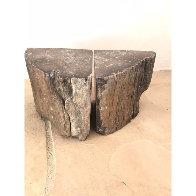 1900s Organic Modern Petrified Wood Bookends - a Pair For Sale - Image 10 of 10