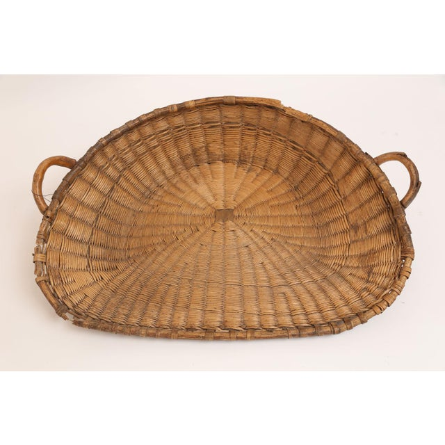Wood Antique French Winnowing Basket For Sale - Image 7 of 8