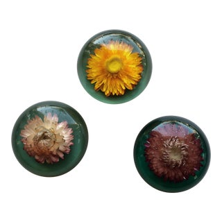 Vintage Floral Paperweights - Set of 3 For Sale