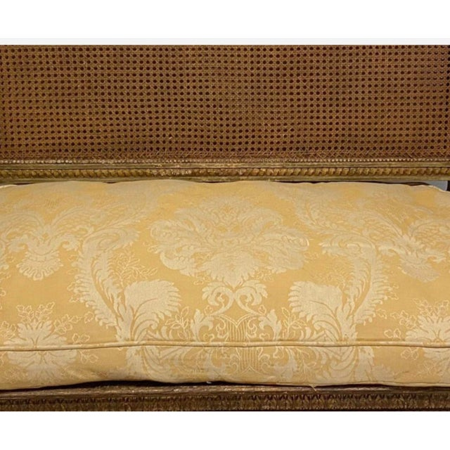 French 19th Century French Napoleonic Double Caned and Giltwood Settee For Sale - Image 3 of 13