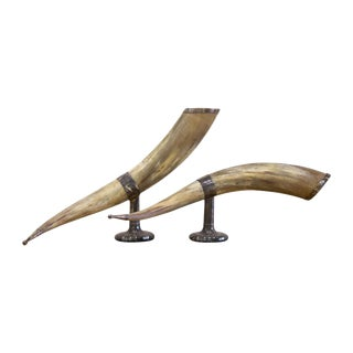 Pair of Mounted Horns