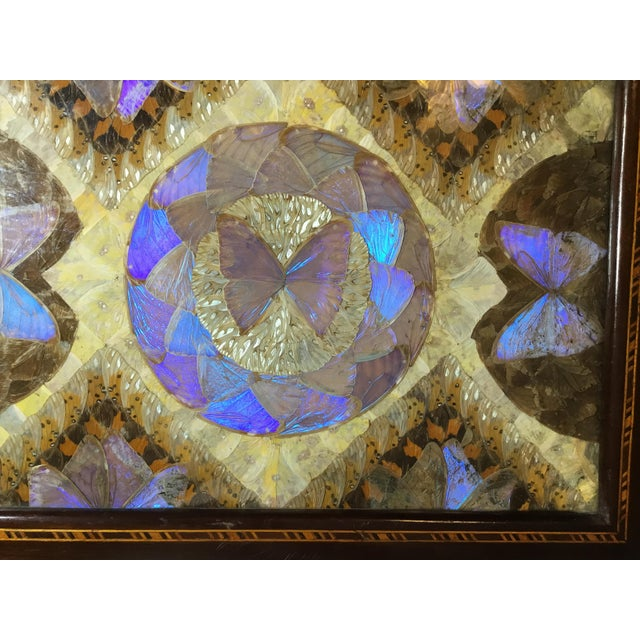 Brazilian Butterfly Wood Tray For Sale - Image 11 of 13