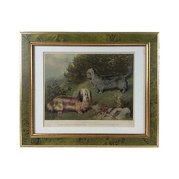 1891 Chromolithograph of Skye Terriers - Image 1 of 2
