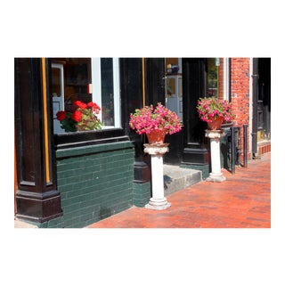 Photograph of Flowers Near a Doorway by Josh Moulton For Sale