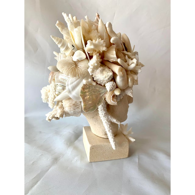 Contemporary Hygiea Shell Encrusted Head For Sale - Image 3 of 9