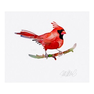 Giclee Print of Red Cardinal For Sale