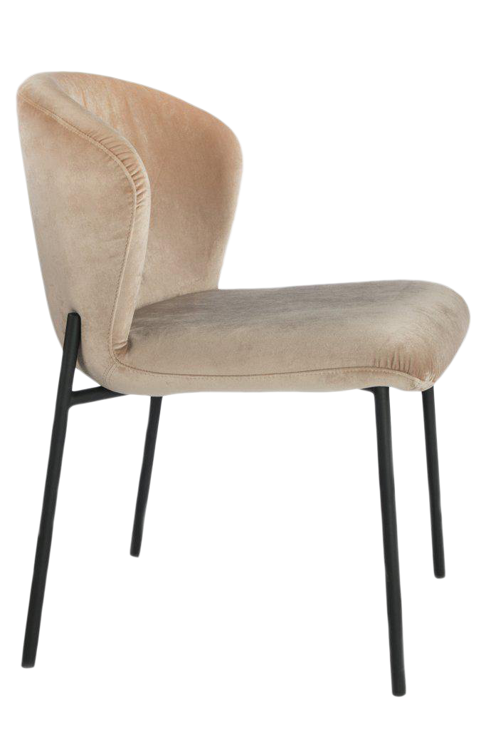 Contemporary J Jamie Statements Latte Velvet Dining Chair For Sale