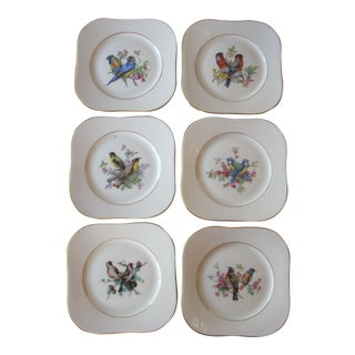 Gold Rim Bird Motif Porcelain Coasters - Set of 6 For Sale
