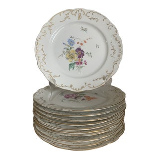 Antique 1896 Onondaga Pottery Co Hand Painted Flowers & Insects Plates - Set of 11 For Sale