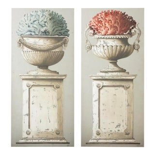 Large Neoclassical Botanical Paintings - a Pair For Sale