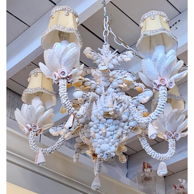 Small Five-Light Shell Adorned Chandelier For Sale In West Palm - Image 6 of 9