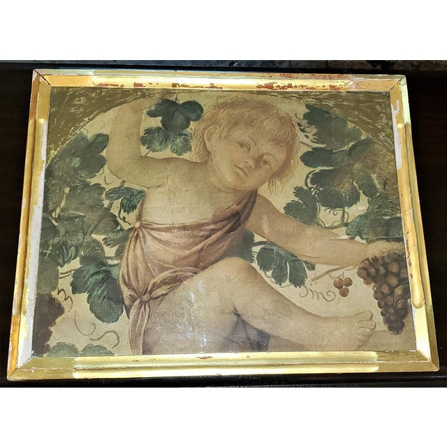 Presenting a glorious early 20c Medici print of putti under a vine. From the very earlt 20th Century, circa 1911. Framed...