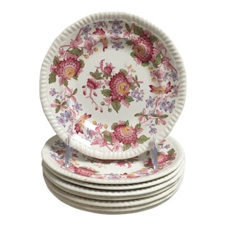 Spode Aster Rope Edge Scalloped Small Plates - Set of 8 For Sale