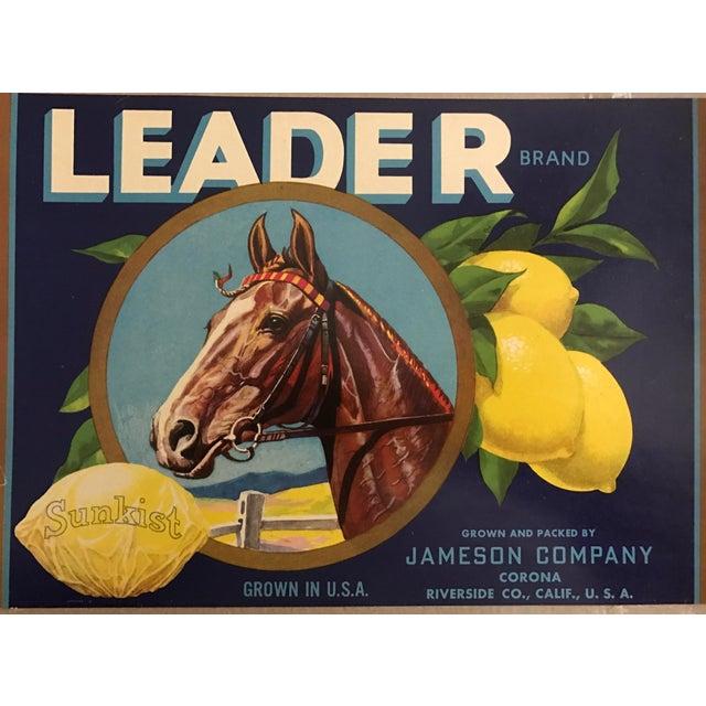 Leader Brand, Sunkist Lemon, Jameson Company, Corona, County of Riverside, Californian