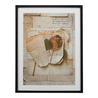 Sarreid LTD Framed Artist Edition Print