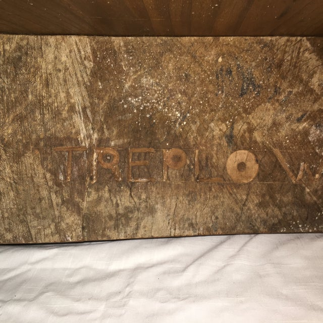 Rustic Live Edge Tree Cocktail Table For Sale - Image 11 of 13