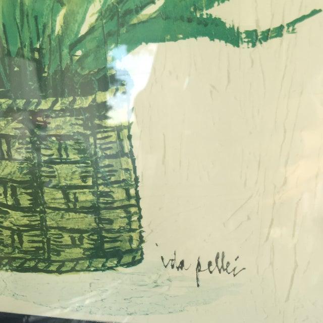 1970's Palm Beach Regency Artist Ida Pellei Botanical Gallery Framed Art - Image 7 of 11