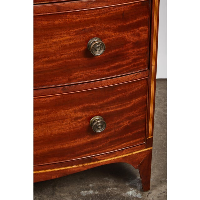 English 19th Century Medium Brown Mahogany Bow Front Chest of Drawers with Inlay - Image 4 of 10