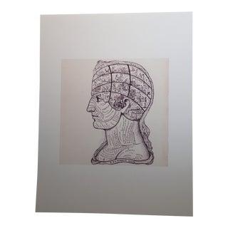 """Symbolic Head"" Phrenology Print"