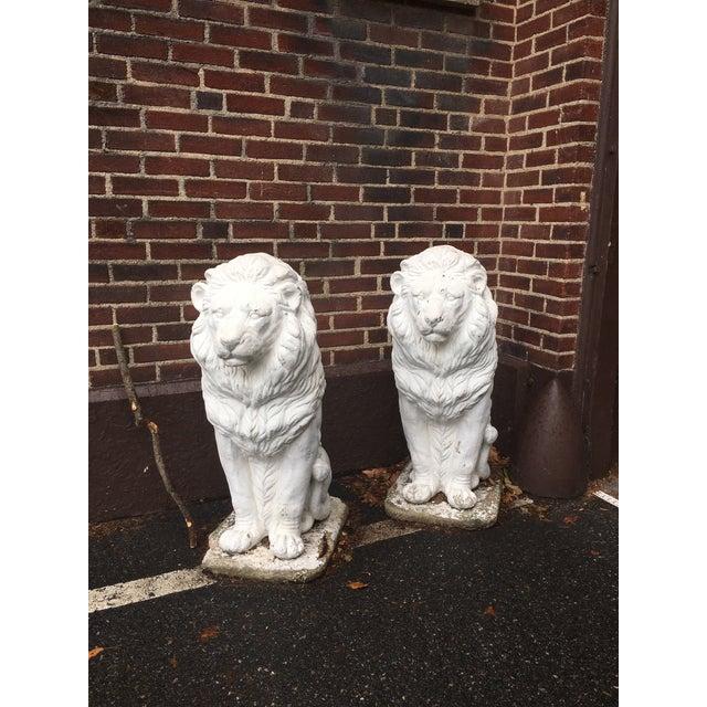 Traditional Concrete Seated Majestic Lion Sentinels - a Pair For Sale - Image 5 of 5