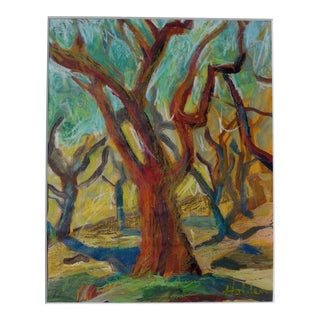 Olive Trees in Provence For Sale