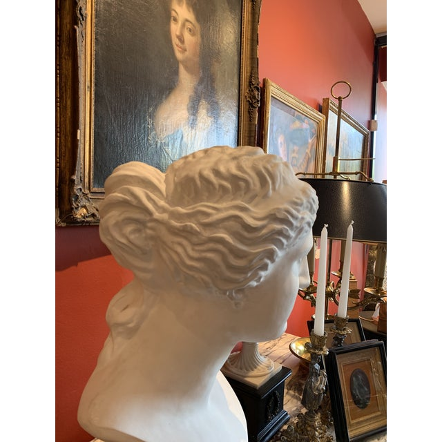 Neoclassical Style Large Plaster Bust of Aphrodite For Sale - Image 9 of 11