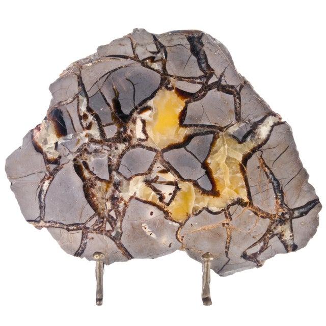 Polished Septarian Stone Slice on Stand - Image 1 of 2