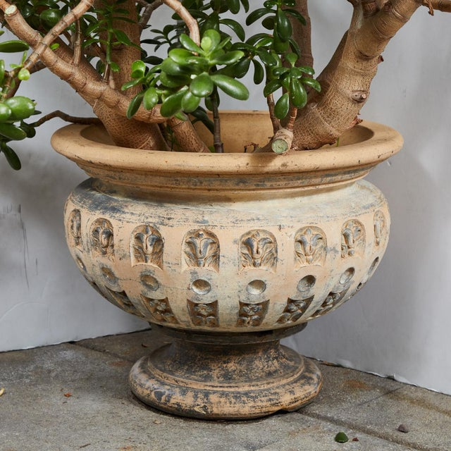 Terra Cotta Planter With Flared Rim From 19th Century England For Sale - Image 11 of 11