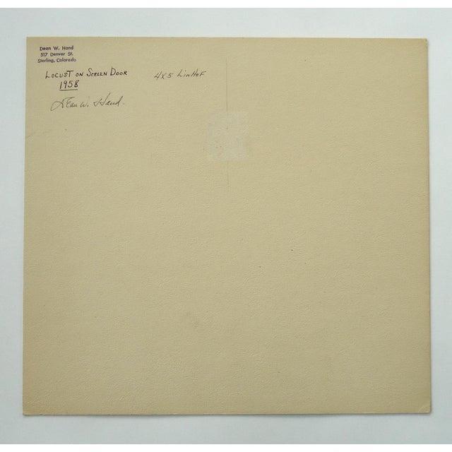 "1958 Dean W Hand ""Locust on Screen Door"" Mid-Century Photograph For Sale - Image 4 of 5"