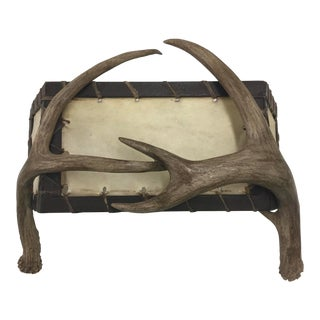 Deer Antler Wall Sconce For Sale