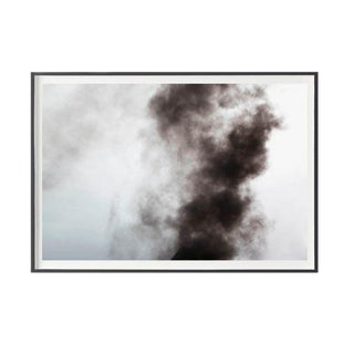 """Jeaneen Lund """"Phoenix #3"""" Unframed Photographic Print For Sale"""