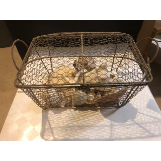 Cape Cod Wire Basket With Assorted Shells Preview