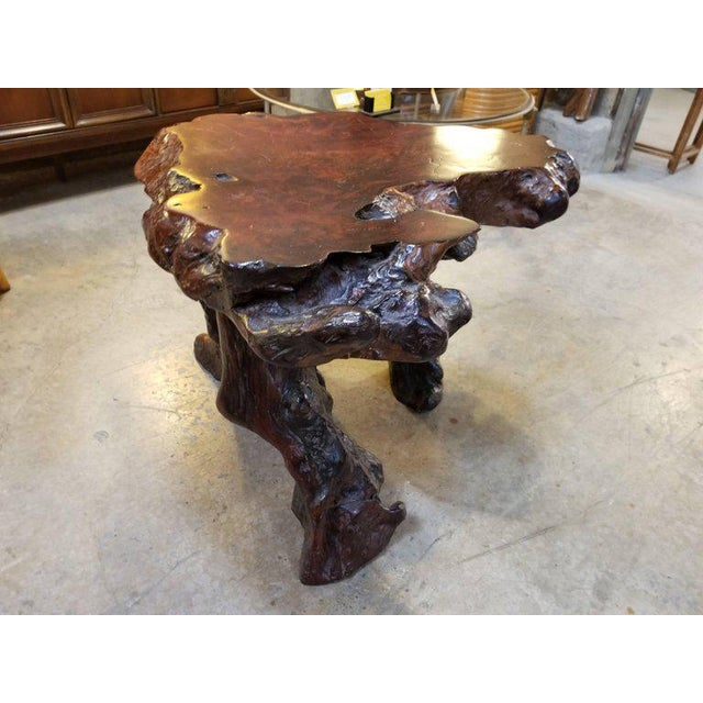 Driftwood Substancial Vintage Redwood Burl and Driftwood End Table For Sale - Image 7 of 11