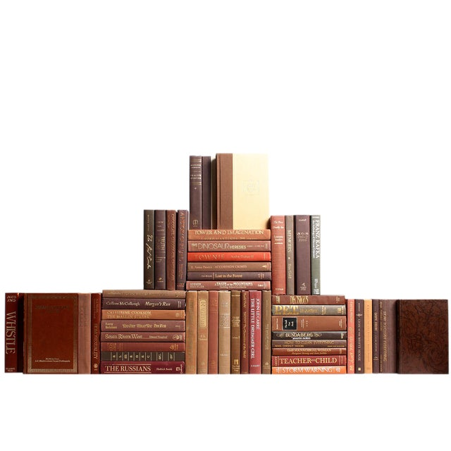 Modern Chocolate Book Wall : Set of Fifty Decorative Books For Sale