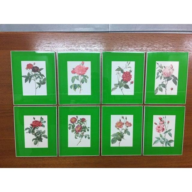 Framed Rose Botanical Prints - Set of 8 - Image 2 of 10