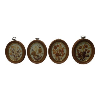 19th Century Scandinavian Pressed Flower Wall Art - Set of 4 For Sale