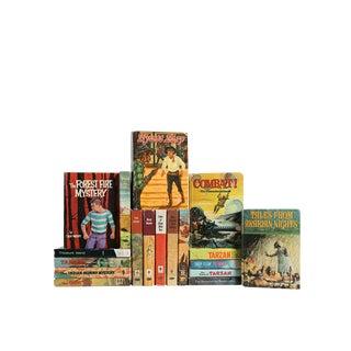 Whitman Classics for Boys - Thirteen Vintage Children's Books