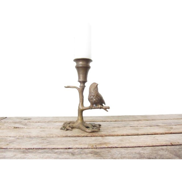 Gold Antique Bronze Bird on Branch Candle Holder For Sale - Image 8 of 9