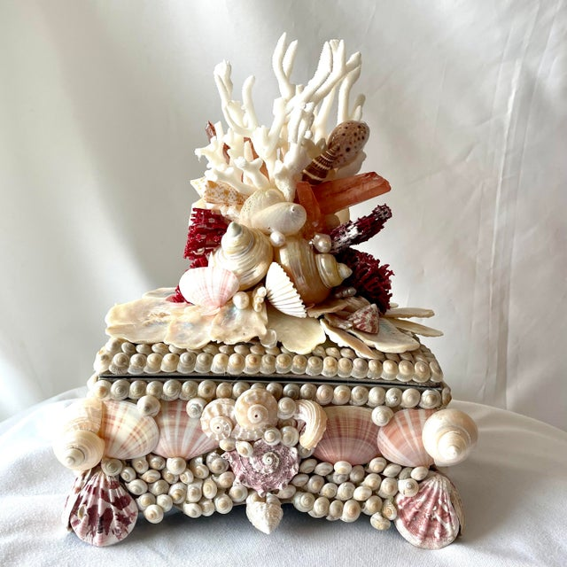 Shell Seashell and Coral Small Box For Sale - Image 7 of 7