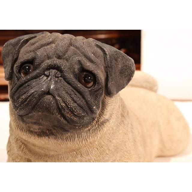 French Early 20th Century French Terracotta Pug Puppy With Glass Eyes For Sale - Image 3 of 8