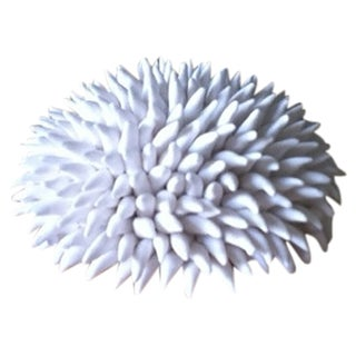 White Matte Porcelain Sea Urchin