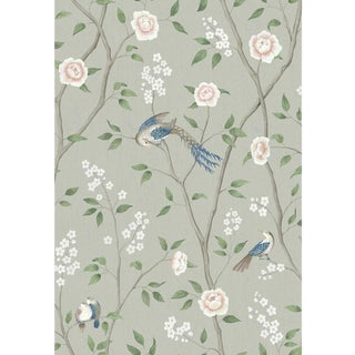 Paradise Birds Wallpaper by Borastapeter Wallpaper - This Is a Sample For Sale