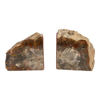 Vintage Petrified Wood Agate Stone Mineral Bookends- a Pair For Sale
