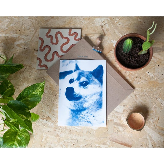 Americana Limited Edition, Doge Meme! Wow! Much Cool! Cyanotype Print on Watercolor Paper For Sale - Image 3 of 4