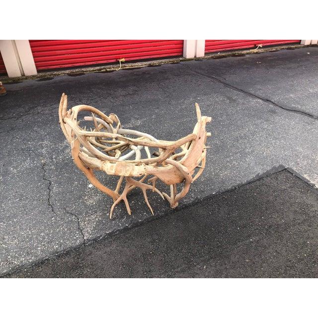 Custom Furniture Builders Vintage Elk Antler Chair For Sale - Image 4 of 6