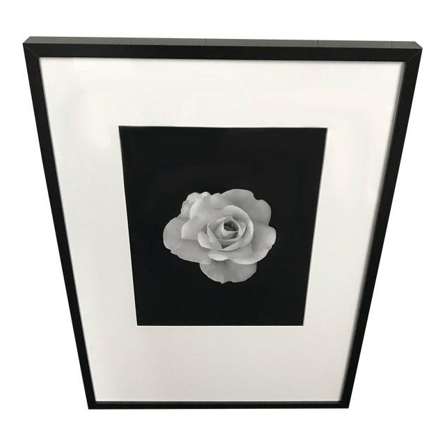 Custom Artwork For Sale